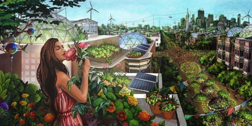 Todo lo que necesitas aprender sobre la permacultura ecológica